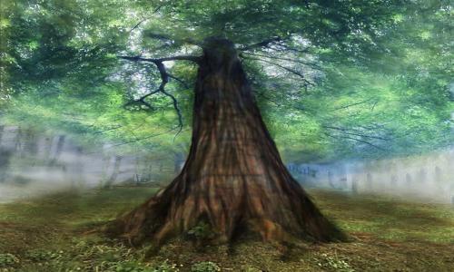 Yggdrasil : l'arbre univers